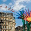 Giant flowers, Trafalgar Square, DH Images