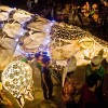 Giant puppet project, Pangolin