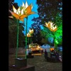 Lotus flowers at Womad