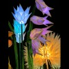 Electric light garden - allium tulips and snowdrops