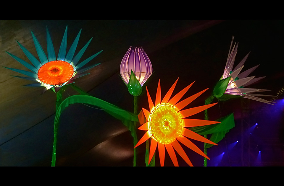 Giant Illuminated Gerber Flowers