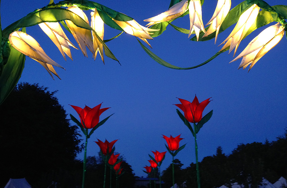 Illuminated Flowers Decor