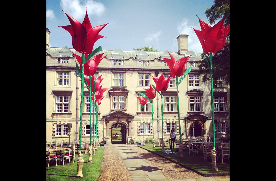 Cambridge ball – giant tulips